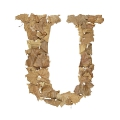 letter initial U autumn leaves ultra realistic