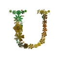 letter initial U autumn flowers decor with passion ultra realistic