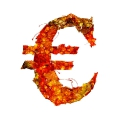 letter initial EURO red color leaves ultra realistic
