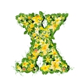 letter initial X spring colorful blooming with vivid green leaves yellow flowers ultra realistic