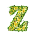 letter initial Z spring colorful blooming with vivid green leaves yellow flowers ultra realistic